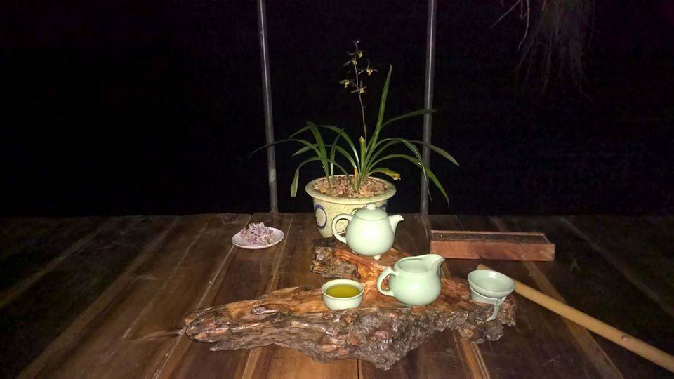 trà hoa lan